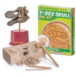 Arheologa komplekts T-REX galvaskauss